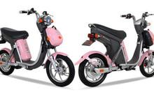 Xe đạp điện cho nữ đẹp không thể dời mắt