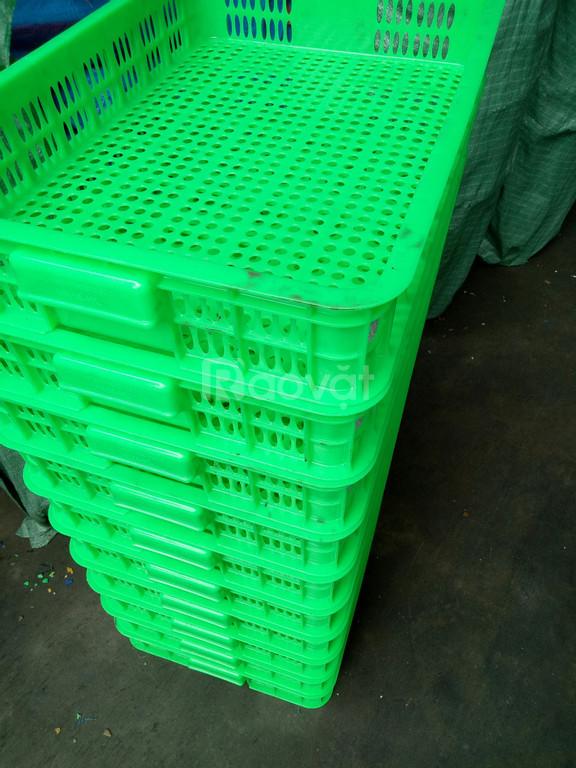 Sọt nhựa hở cao 1 tấc đựng thực phẩm sản xuất tại Việt Nhật (ảnh 4)