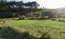 Cần bán 1618m2 đất tại xã Lê Lợi Hoành Bồ, Quảng Ninh