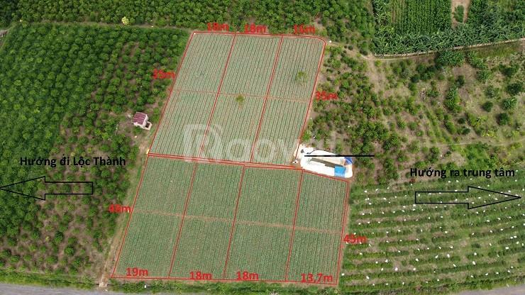Đất mặt tiền Tố Hữu nối dài, thông QL55 và QL20, P.Lộc Sơn, Bảo Lộc