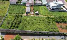 195m2 đất, có 160m2 thổ cư ngay TT TP Bảo Lộc, có sẵn nhà mới xây