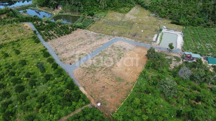 9000m2 đất Lộc Thành, Bảo Lộc, view núi Đại Bình tuyệt đẹp