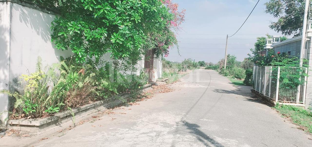 Bán gấp 312m2 trong khu biệt thự Phú Đông đường 2 ô tô tránh nhau (ảnh 5)