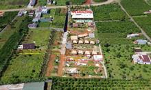 Đất nghỉ dưỡng tuyệt đẹp có 1 không 2 tại trung tâm TP Bảo Lộc