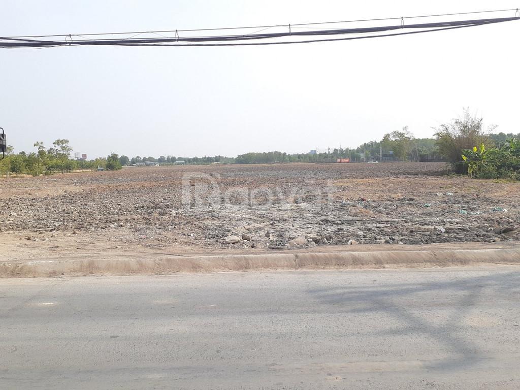 Đất nền đường Hoàng Phan Thái xã Bình Chánh