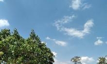 Bán trang trại nhà vườn 2 MT đường xe hơi Lý Thái Tổ, Dambri, view đẹp