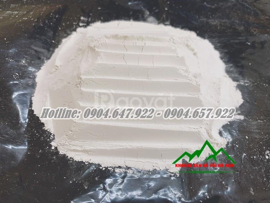 Chuyên cung cấp Bột đá Canxi thủy sản giá rẻ nhất thị trường (ảnh 5)