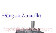 Động cơ Amarillo