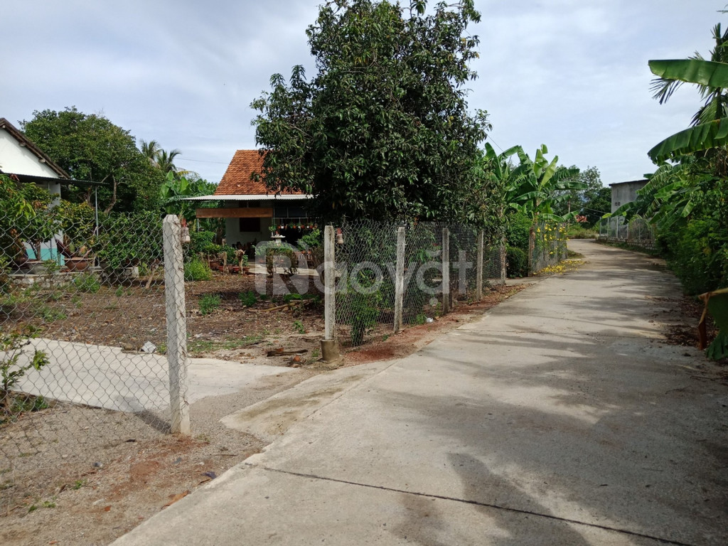 Bán đất Diên An gần đường Võ Nguyên Giáp