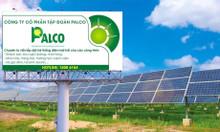 Tập đoàn Palco chuyên cung cấp lắp đặt điện năng lượng mặt trời.