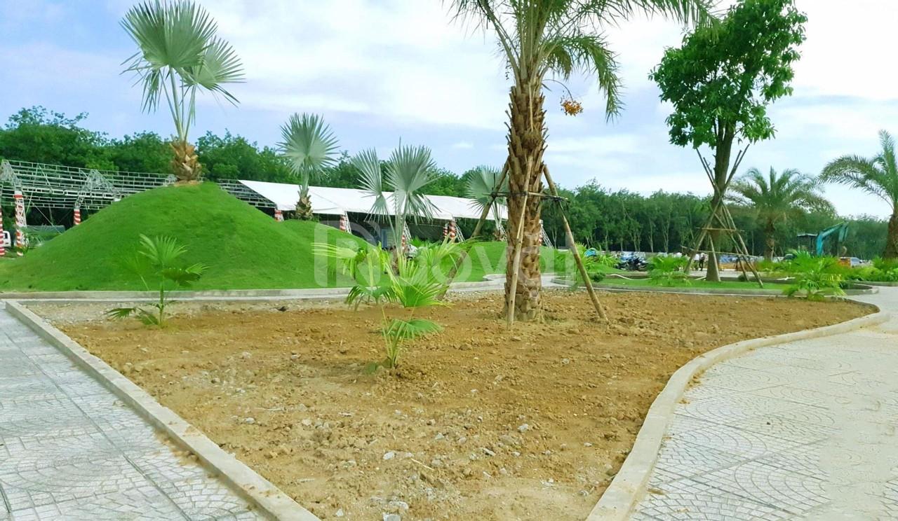 Đất nền Bến Cát, phường Chánh Phú Hòa, thị xã Bến Cát, SHR, ĐT 741 (ảnh 6)