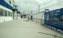 Cho thuê kho xưởng 4.200m2 trong khuôn viên 3.5ha Phan Huy Ích, Gò Vấp