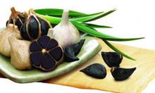 Công ty Biogreen bán bột tỏi đen Lý Sơn
