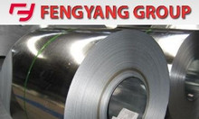 Cuộn Inox 316L giá xuất xưởng