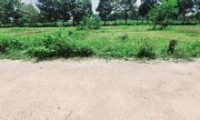 Bán gấp 500m2 đường ô tô xã Phú Đông cách Cát Lái 5 phút
