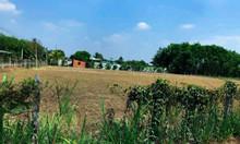 Bán đất Tỉnh Lộ 7, xã Phú Mỹ, thị trấn Củ Chi, 1000m2, giá 3,53 tỷ