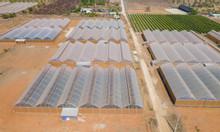 Đất làm vườn Bình Thuận chỉ 50K/M2, SHR mặt tiền quốc lộ 1A