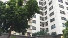 Cho thuê MB tầng 1 tòa Housinco Phùng Khoang làm showroom 240m2 (ảnh 3)