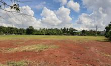 Bán đất KP1, MT Mỹ Xuân Ngãi Giao, BRVT, 500m2/100TC/950tr