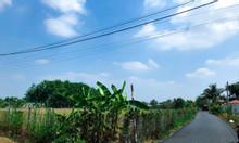 Bán đất tỉnh lộ 7, Thái Mỹ, thị trấn Củ Chi