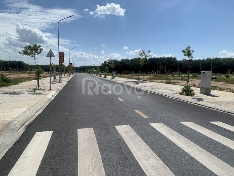 Nhận đặt chỗ ưu tiên Phân khu mới Park View dự án Mega City Kon Tum (ảnh 7)