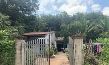 Cần bán gấp lô đất vườn nằm cạnh KCN Bàu Bàng, Bình Dương