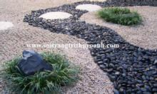 Sỏi đen bóng trang trí tiểu cảnh sân vườn tại TP HCM
