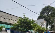 Bán nhà mặt tiền 11m, 240m2, số 32 Đặng Đại Độ, Hiệp Hòa, Biên Hòa, ĐN