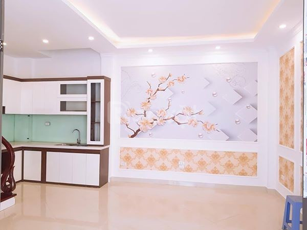 Nhà lô góc Hoàng Hoa Thám, Ba Đình (ảnh 5)