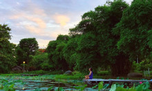 Cần bán gấp lô góc nhà phố thương mại Thủy Nguyên KĐT Ecopark, 200m2