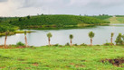Đất ven hồ DT lớn 4872m2, có 400m2 thổ, sổ riêng công chứng ngay. (ảnh 3)