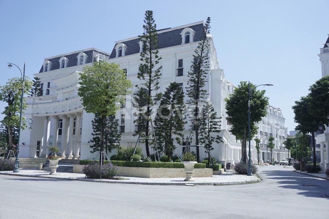 Liền kề biệt thự Louis City Hoàng Mai - Vừa mua đã lãi