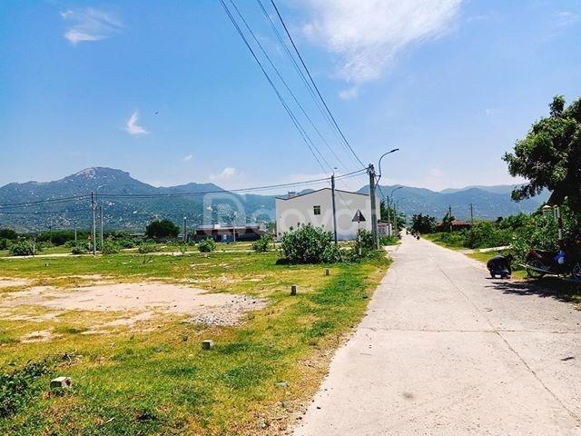 Cần tiền bán gấp đất nền ngay quốc lộ 1A, Thuận Nam, Ninh Thuận