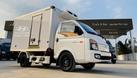 Hyundai New Porter 150 thùng đông lạnh (ảnh 4)