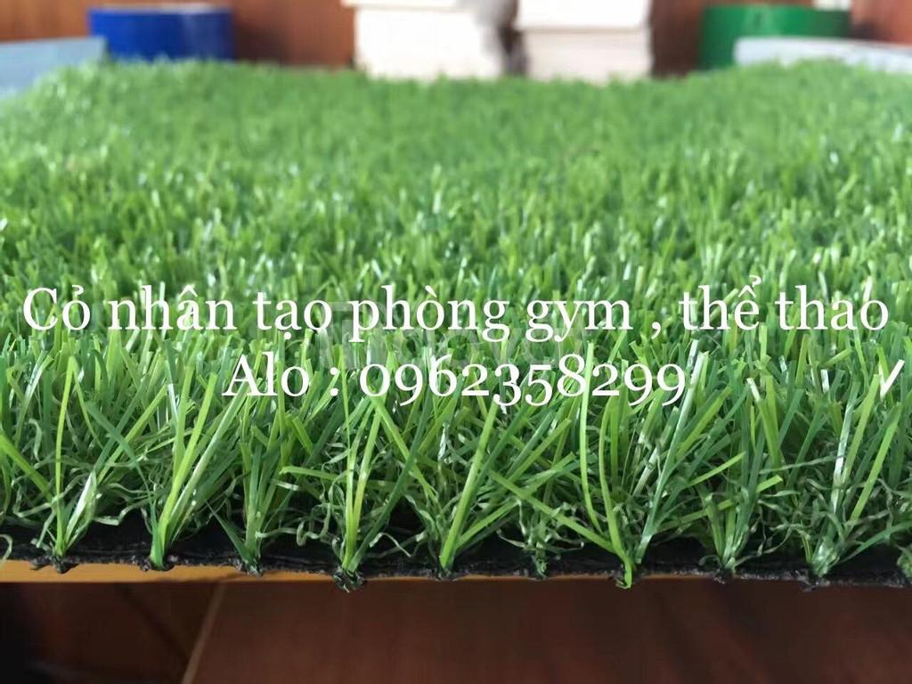 Thảm cỏ nhân tạo phòng gym cao cấp  (ảnh 1)