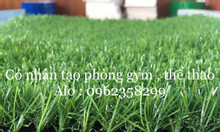 Thảm cỏ nhân tạo phòng gym cao cấp