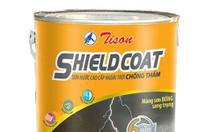 Sơn ngoại thất Tison Shieldcoat sơn bền đẹp giá cạnh tranh
