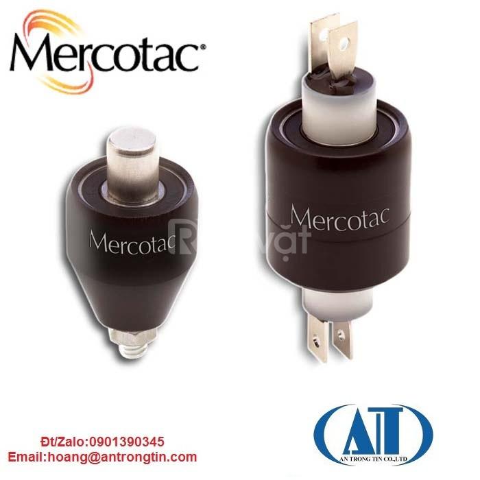 Khớp nối xoay điện mercotac (ảnh 4)