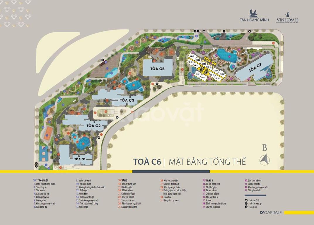 Cho thuê căn hộ Soho C2.21 Vinhomes D'Capitale Trần Duy Hưng (ảnh 1)