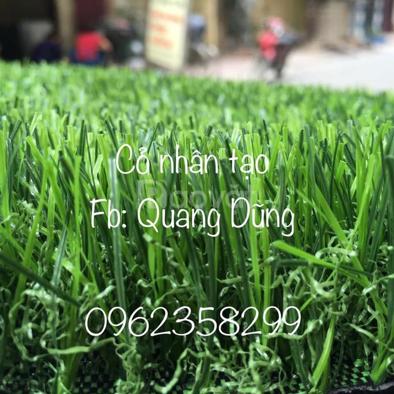 Thảm cỏ nhân tạo phòng gym cao cấp  (ảnh 6)