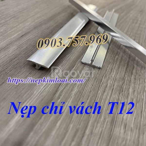 Nẹp inox t12, nẹp t12 nhôm, nẹp trang trí t12 (ảnh 3)