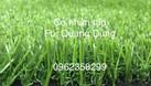 Thảm cỏ nhân tạo phòng gym cao cấp  (ảnh 4)