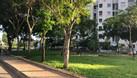 Đất nền HXH, sổ hồng riêng khu Tên Lửa, cách Aeon Mall Bình Tân 3p (ảnh 5)
