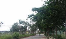 Bán lô đất dự án Villa Nguyễn Xiển, DT 4.29m x 13.68m, giá 2.35 tỷ