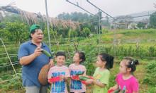 Bao trọn trang trại sinh thái Eco Farm trong một ngày