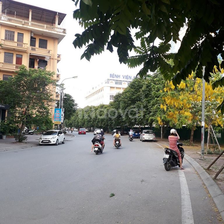 Bán đất mặt ngõ Hoàng Như Tiếp gần đa khoa Tâm Anh (ảnh 5)