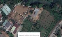 Cần bán gấp đất thổ cư xã Tân Bình, Vĩnh Cửu giá 1 tỷ 300 triệu /500m2