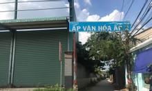 Bán đất Đường Tỉnh Lộ 10, xã Phạm Văn Hai, Bình Chánh