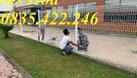Chuyên sản xuất lưới thép hàng rào mạ kẽm, sơn tĩnh điện hàng có sẵn (ảnh 5)
