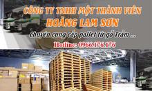 Hoàng Lam Sơn cung cấp số lượng lớn nang gỗ pallet